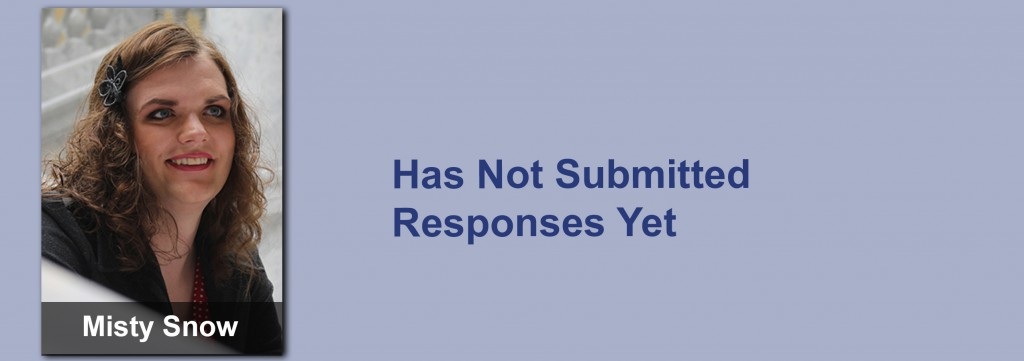 Misty Snow has not submitted her responses yet.