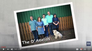 screenshot of Burr ad showing picture of the D'Amelios family