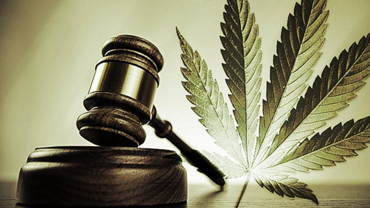 Image of a gavel in front of a cannabis leaf