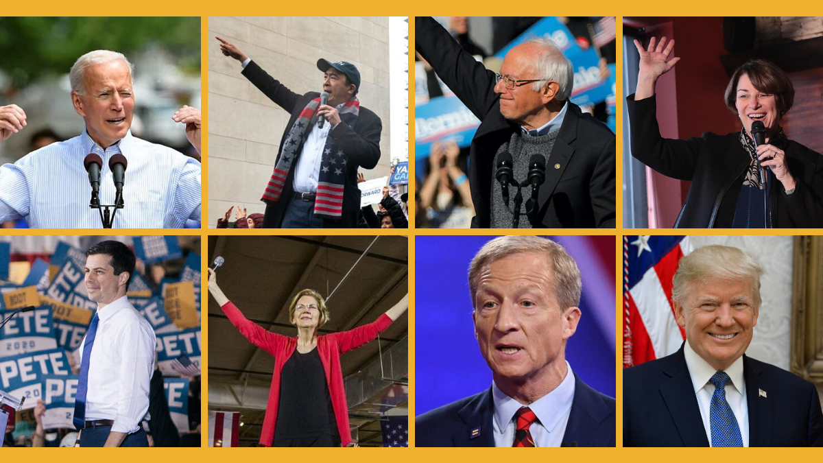 Individual photos of Joe Biden, Andrew Yang, Bernie Sanders, Amy Klobuchar, Pete Buttigieg, Elizabeth Warren and Tom Steyer speaking at rallies or on stages. Official portrait of President Trump.