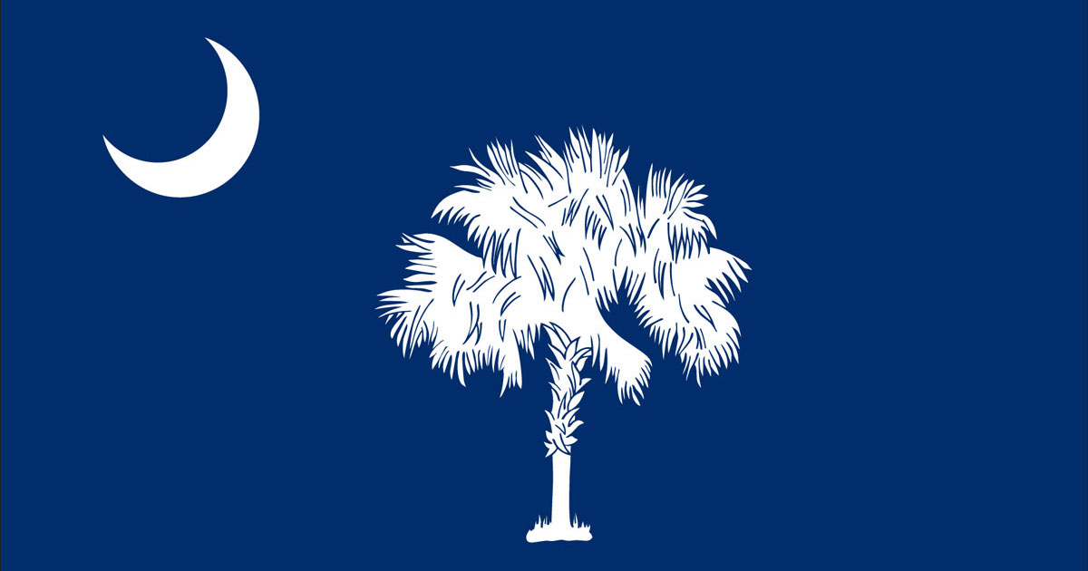 South Carolina state flag with a tree and the moon